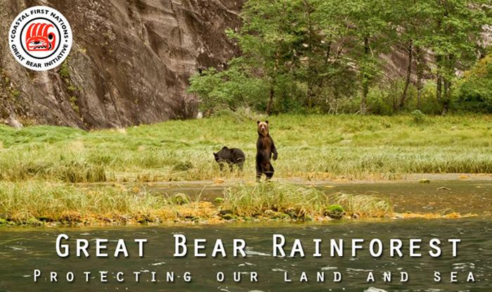Great Bear Rainforest Initiative